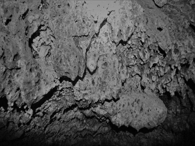 c e buffalo caves ooey