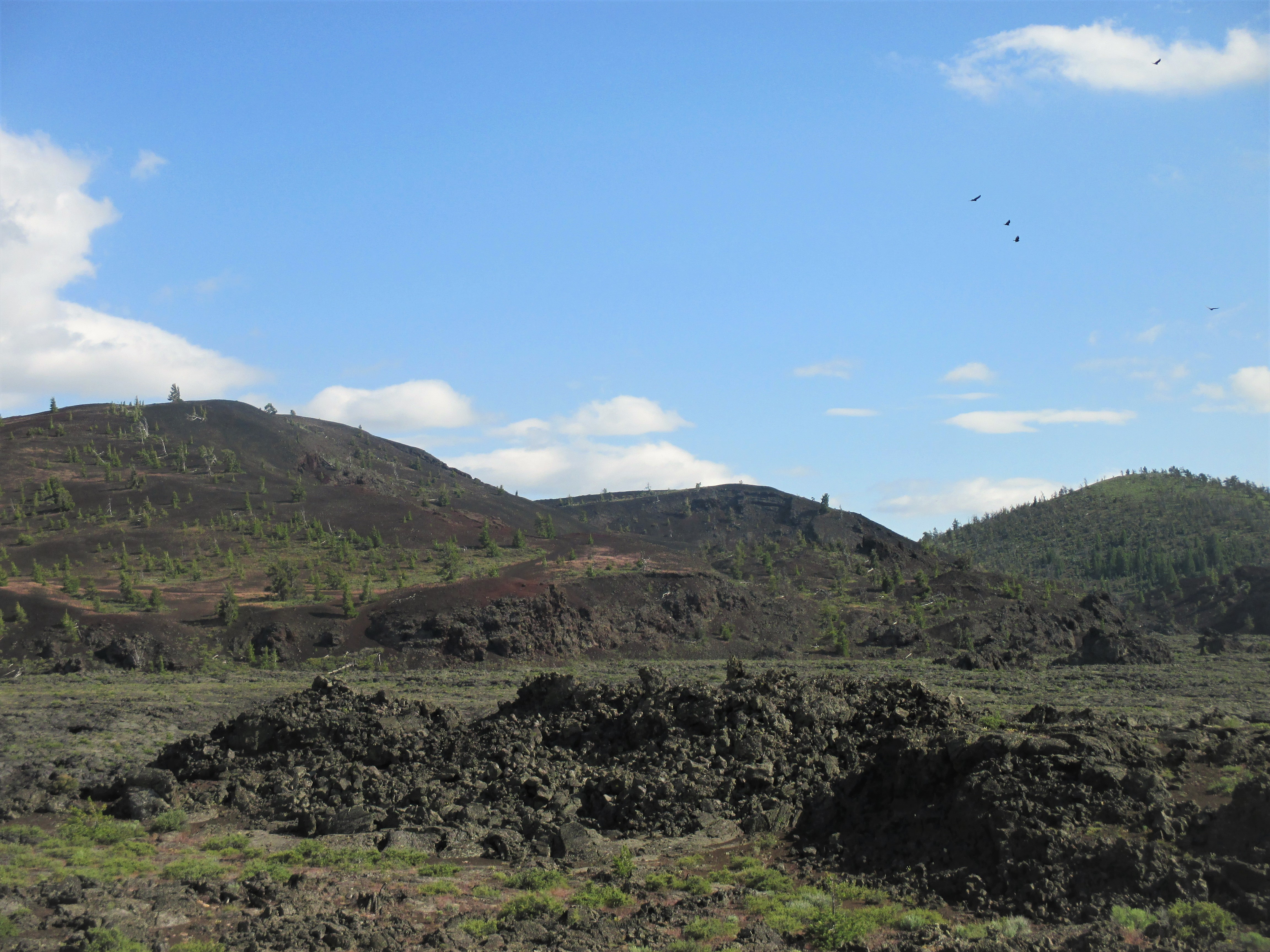 p cinder cones with vultures